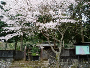 金剛山 大隆寺
